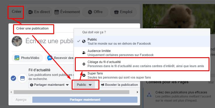 Facebook cibler public post