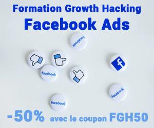 Formation Facebook Ads