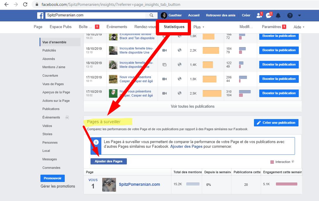statistiques facebook pages à surveiller