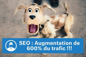 growth-hack-seo-epique-augmentation-de-600-pour-cent-du-trafic-compressor